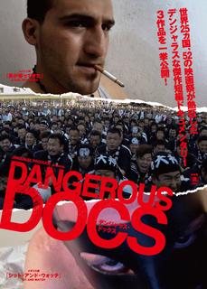 dangerous docs.jpg