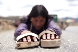 Lhasa_サブ3_R.jpg