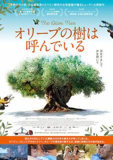 olive kiwa yondeiru.jpg